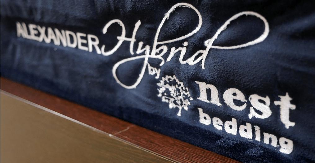 Nest Alexander hybrid logo