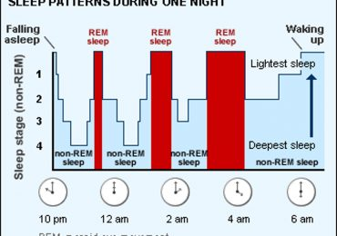 Sleep patterns during one night